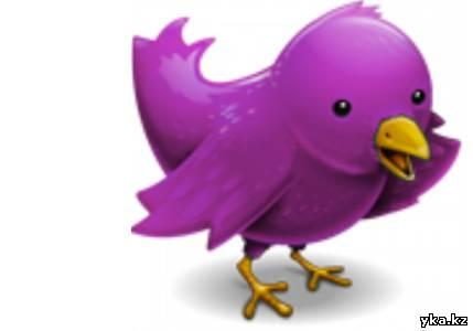социальные сети, твиттер, щебетать