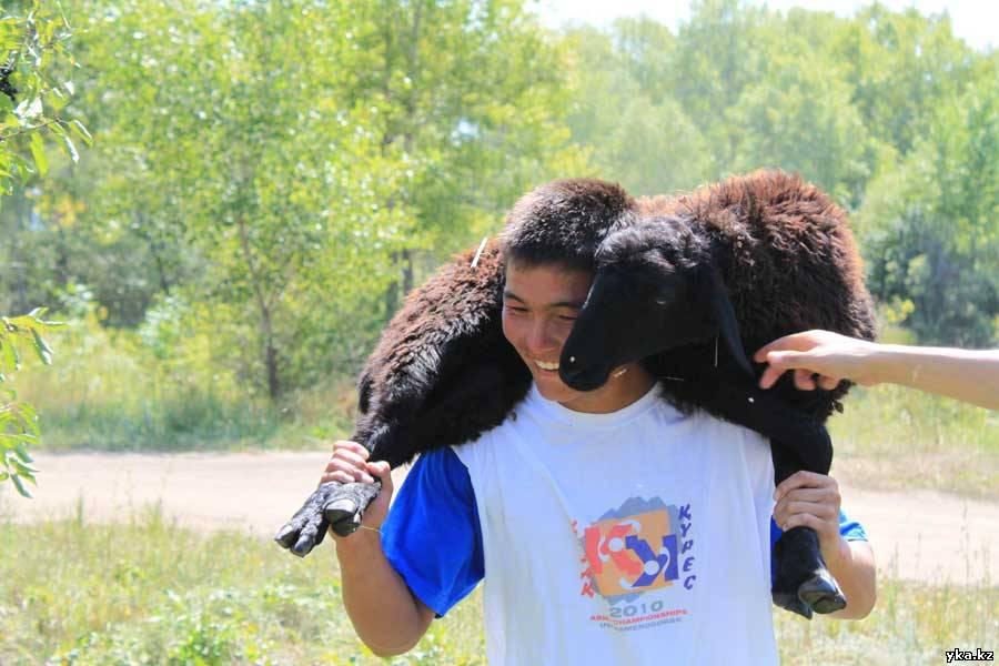 Главный приз казакша курес живой баран на шее чемпиона, усть-каменогорск 2010, спорт, день спорта, фото