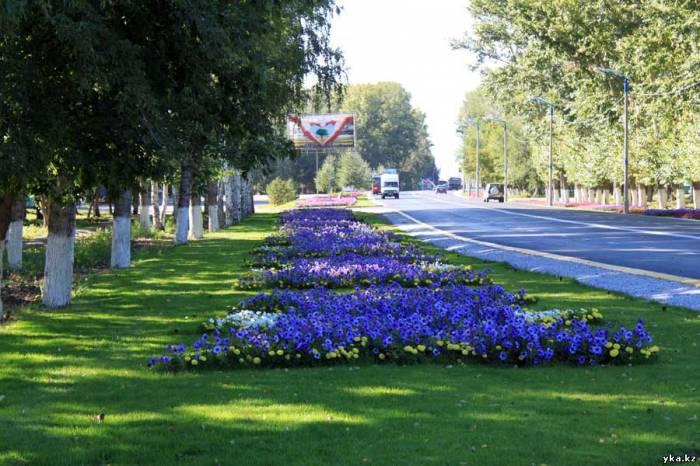 Цветочный ковер заполняет значительное пространство вдоль главного проспекта Усть-Каменогорска